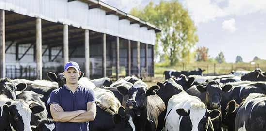 XL Robotic Farm Milk Cooling